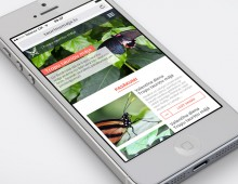 Website design for Tropical Butterfly House